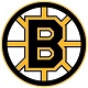Click here for more information about (3) Bruins Raffle Tickets